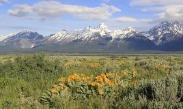 Les montagnes couvertes par neige de Tetons, Etats-Unis images stock
