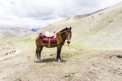 Les montagnes d'arc-en-ciel du Pérou Image stock