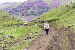 Les montagnes d'arc-en-ciel du Pérou Photos stock