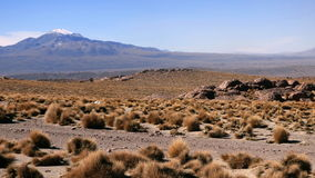 Les montagnes dans Siloli abandonnent, Bolivien Altiplano, Amérique du Sud Images libres de droits