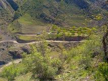 Les montagnes de Caucase Photos libres de droits