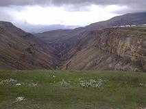 Les montagnes de Caucase Images libres de droits