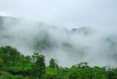 Les montagnes de couleur de brouillard Images libres de droits