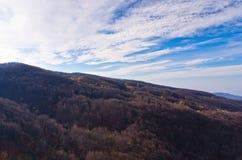 Les montagnes de Homolje aménagent en parc avec une forêt noire un jour ensoleillé d'automne Photo libre de droits