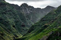Les montagnes de Teno sur Ténérife Sombre mais plein de la verdure et des usines, cette vallée se montre un jour pluvieux photo stock