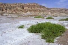 Les montagnes du ciel, Xinjiang, Chine photographie stock libre de droits