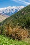 Les montagnes en pierre du prince Images libres de droits