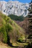 Les montagnes en pierre et l'érosion naturelle du prince ont appelé Cerdacul Sta Photos stock