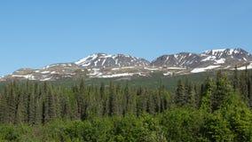Les montagnes et les forêts de l'Alaska Photographie stock libre de droits