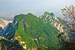 Les montagnes vertes Images stock