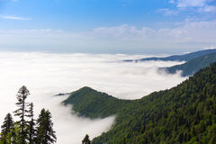 Les montagnes vertes au-dessus des nuages montent le ciel de brouillard photographie stock