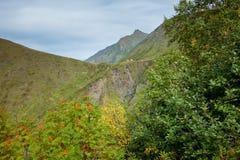 Les montagnes vertes de la réserve naturelle caucasienne Photographie stock libre de droits