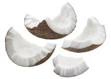 Les morceaux de coquille de noix de coco ont placé d'isolement sur le fond blanc Photo libre de droits