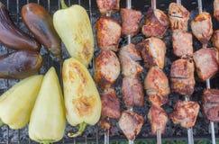 Les morceaux de viande de porc avec des légumes ont fait cuire extérieur Images libres de droits