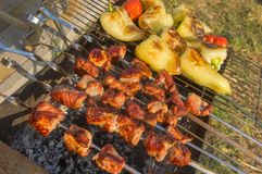Les morceaux de viande de porc avec des paprikas ont fait cuire extérieur Images stock