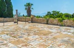 Les mosaïques de Carthage images stock