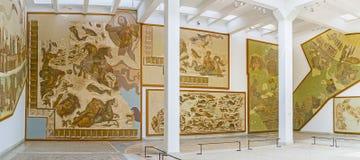 Les mosaïques préservées dans le musée image libre de droits