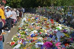 Christchurch Mosques Massacre Floral Tribute & Mourners New Zealand