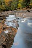 Les mouchards de l'eau entre la roche au ` s de Wilson tombe photo libre de droits