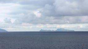 Les mouettes communes volant sur le méditerranéen voient avec l'îlede Capri de Naples banque de vidéos