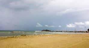 Les mouettes Tempête sur l'Adriatique Photo stock