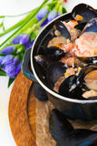 Les moules Images stock
