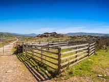 Les moutons clôturent sur l'île de Valentia, Irlande photographie stock libre de droits