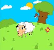 Les moutons ont attaqué sur le loup Photo stock