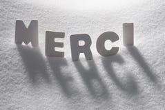 Les moyens blancs de Word Merci vous remercient sur la neige photo libre de droits