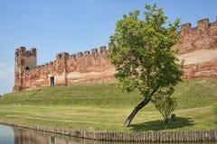 Les murs de Castelfranco Vénétie (Trévise) photographie stock libre de droits