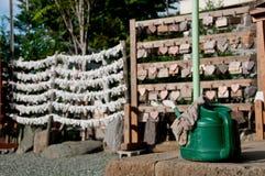 Les noeuds blancs japonais de fortune et la plante verte versent le seau dans le te Images libres de droits