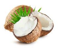 Les noix de coco avec du lait éclaboussent et poussent des feuilles d'isolement sur le fond blanc Photographie stock