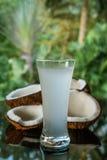 Les noix de coco et la noix de coco arrosent sur la table en verre noire d'isolement au-dessus du fond brouillé de palmiers Photographie stock libre de droits