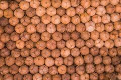 les noix de coco sèchent Photo libre de droits