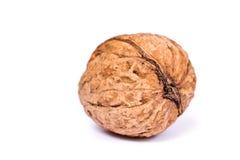 Les noix se ferment vers le haut de d'isolement Image libre de droits
