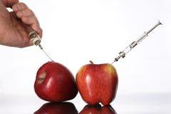 Les nourritures génétiquement modifiées, pomme ont pompé avec des produits chimiques Images libres de droits
