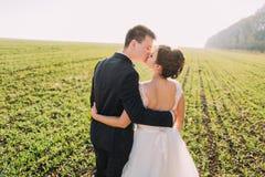 Les nouveaux mariés de baiser dans le domaine vert La vue arrière Photographie stock