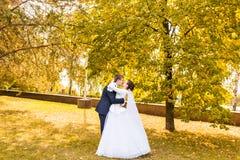 Les nouveaux mariés en automne se garent, les baisers de marié sa jeune mariée Images libres de droits