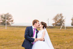 Les nouveaux mariés en nature d'automne, le marié embrassent sa jeune mariée Photo libre de droits