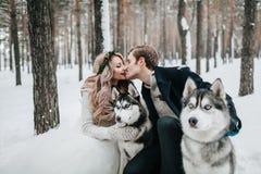 Les nouveaux mariés gais embrassent sur le fond du chien de traîneau marié de mariée wedding à l'extérieur l'hiver dessin-modèle Image stock
