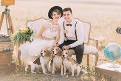 Les nouveaux mariés heureux s'asseyent avec les trois petits chiens sur le sofa démodé surrouned par les valises de vintage Image libre de droits