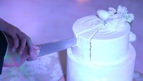 Les nouveaux mariés ont coupé leur gâteau de mariage ensemble, plan rapproché clips vidéos
