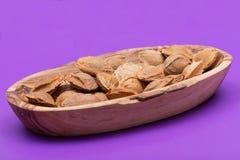 Les noyaux d'abricot sec la graine d'un abricot, ont souvent appel? une ?pierre ?dans la cuvette en bois sur le pourpre Amygdalin photos libres de droits