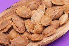 Les noyaux d'abricot sec la graine d'un abricot, ont souvent appel? une ?pierre ?dans la cuvette en bois sur le pourpre Amygdalin images libres de droits