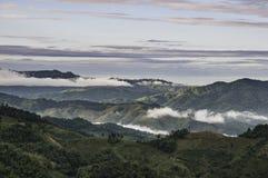 Les nuages d'arbres de montagnes refroidissent le temps Photo libre de droits
