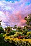 Les nuages de couleur du stationnement de fleur Images libres de droits