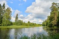 Les nuages et les arbres se sont reflétés dans l'eau de l'AMO d'Oredezh de rivière Images libres de droits