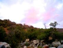 Les nuages roses de moment photo libre de droits