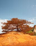 Les Ocres du Roussillon. Also know as The little colorado Stock Photography