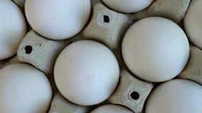 Les oeufs blancs de poulet sont frais, empilé dans l'emballage écologique de carton banque de vidéos